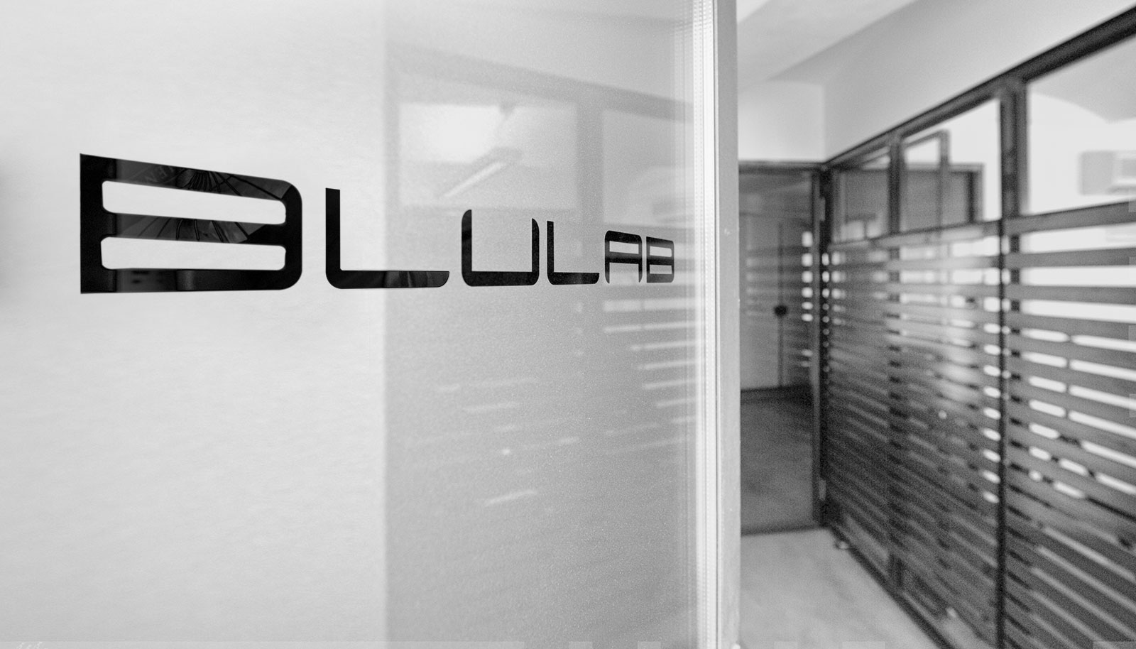 Blulab web agency