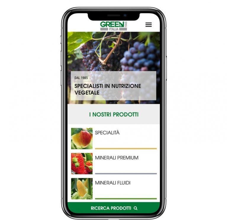 Green Has Italia – Gestione di un catalogo B2B