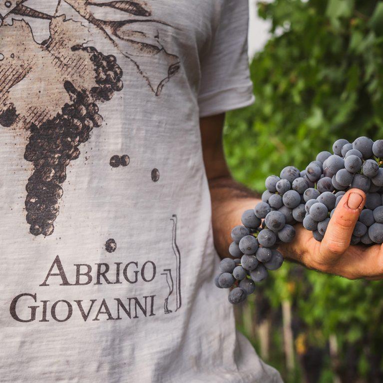 Azienda Agricola Abrigo Giovanni